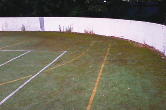 neupravený poškozený starý trávník